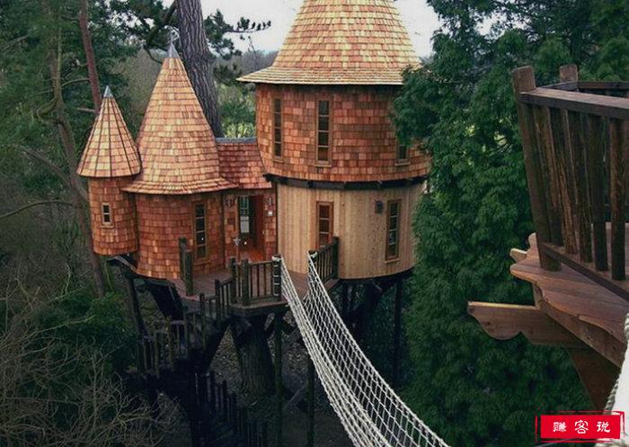 蓝森林高树屋