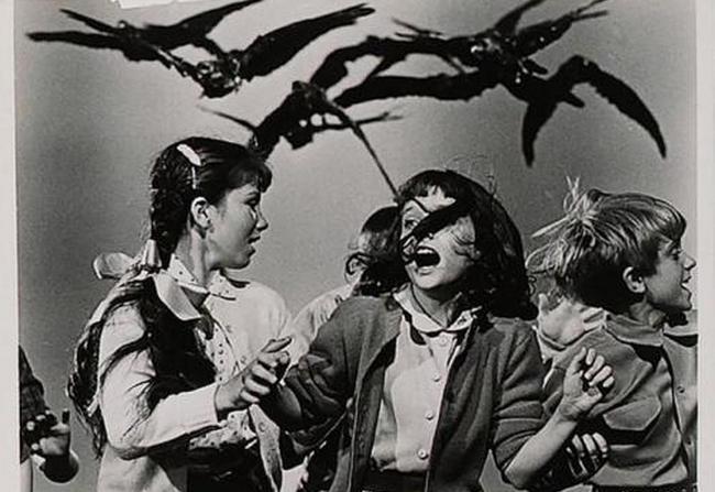 希区柯尔最经典的十部电影 人性与命运的思考