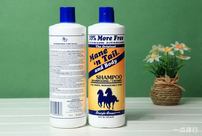 全球十大最好用的洗发水排行榜 哪个牌子的洗发水最好