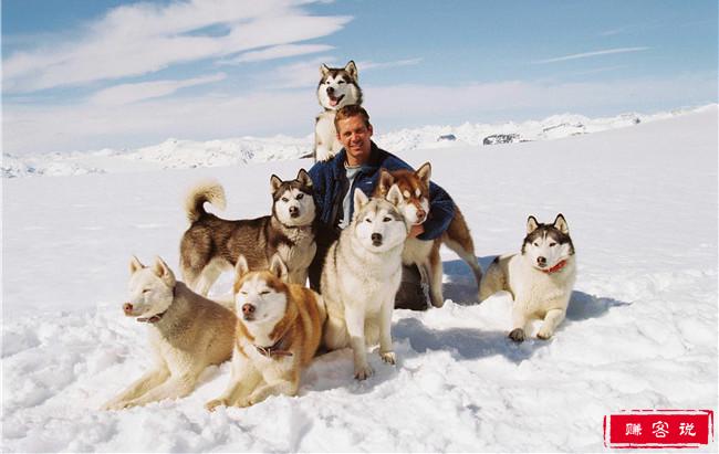 《南极大冒险》