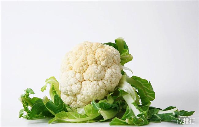 十种生长最快的蔬菜排行 什么蔬菜生长周期最快