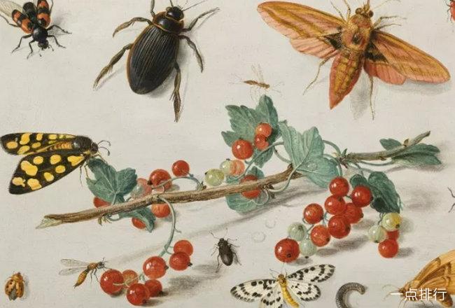世界上腿最多的动物排名 千足虫身体超过20段节