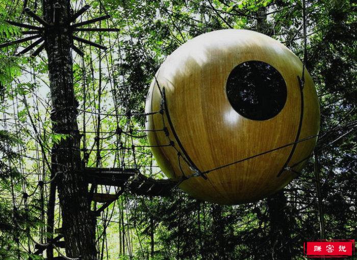 自由精神球形树屋